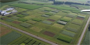Aerial Image of the Arlington Research Farm